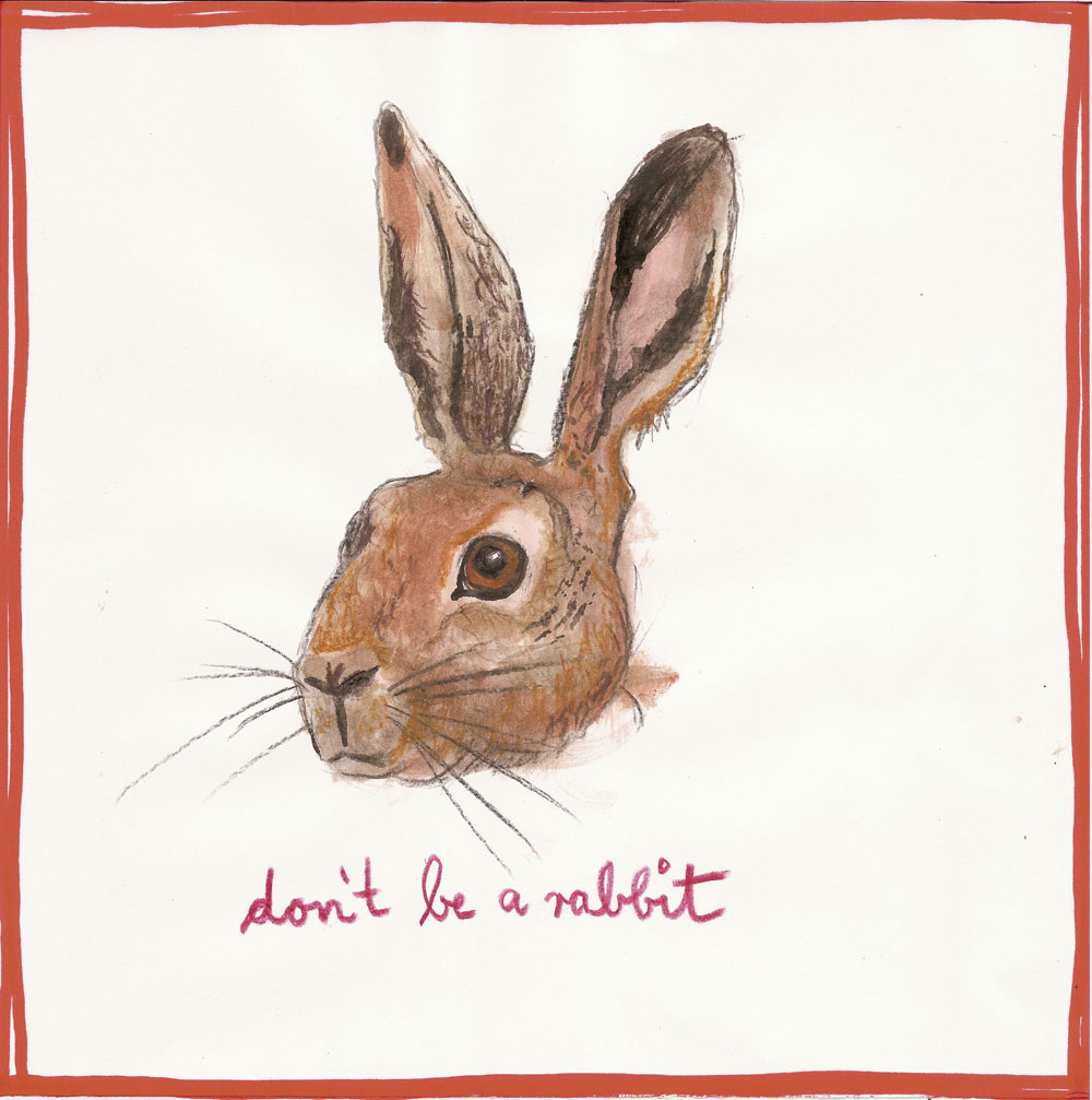 """Don´t be a rabbit"", Mischtechnik auf Papier, 21 cm x 21 cm, Privatbesitz"